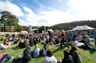 Falls Festival, Lorne, 2008, Music Festival