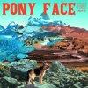 Pony Face